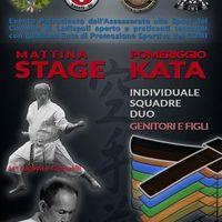locandina ladispoli karate