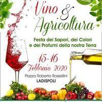 vino-e -agricoltura 2020
